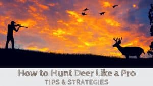 Deer Hunting Tips, How to Hunt Deer