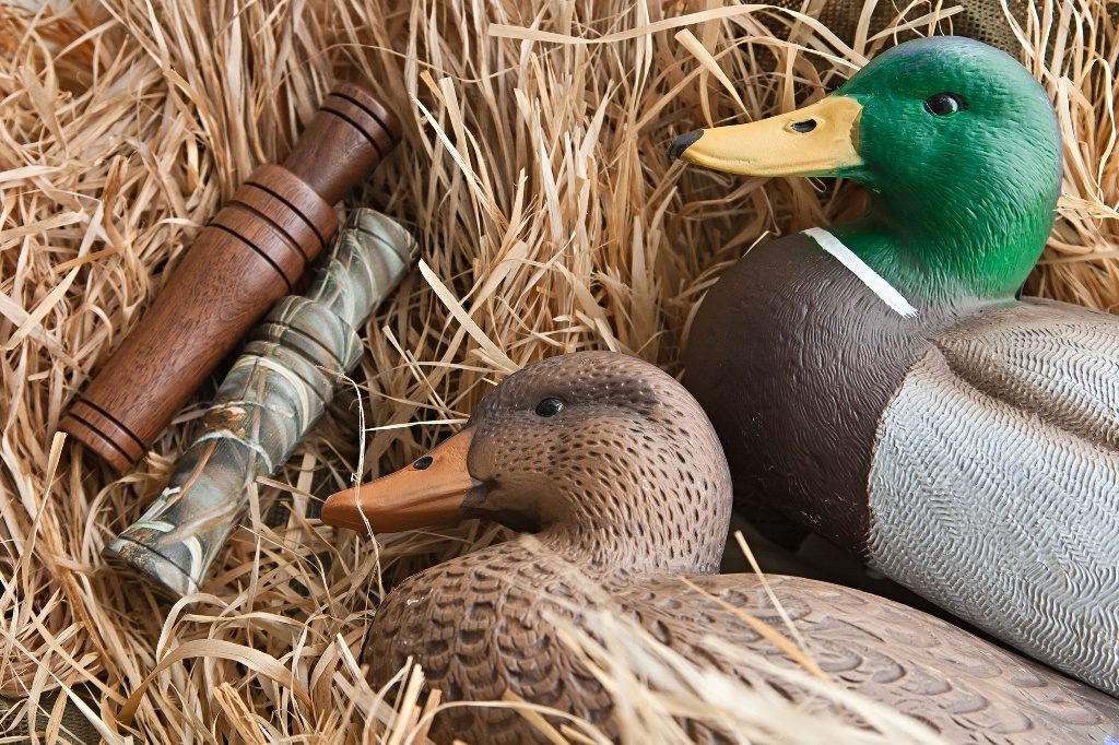Duck Decoys and Calls
