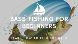 Bass Fishing for Beginners – Learn How to Fish for Bass