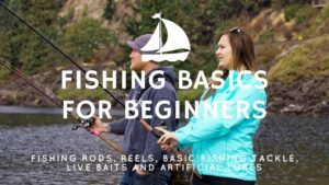 Fishing Basics for Beginners (Learn to Fish: Part 1)