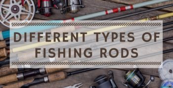 Different Types of Fishing Rods Explained