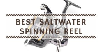 12 Best Saltwater Spinning Reels Under $200