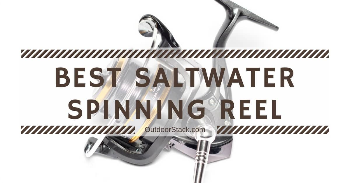 12 Best Saltwater Spinning Reels Under $200 in 2020 Reviews