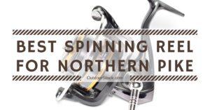 Best Spinning Reel for Northern Pike
