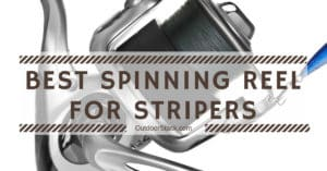 Best Spinning Reel for Stripers
