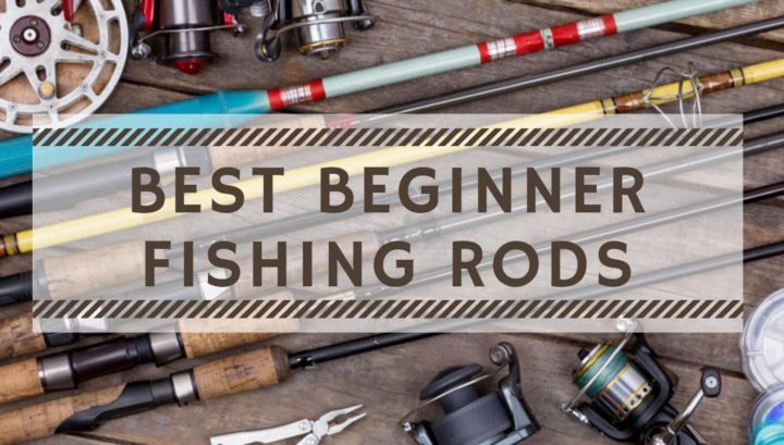 Best Fishing Rod and Reel for Beginners