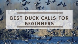 12 Best Duck Calls for Beginners 2020 – Reviews & Buying Guide