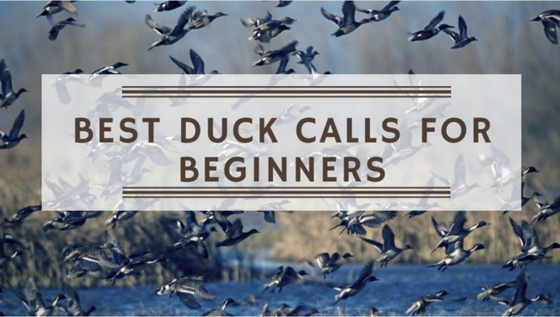 Best Duck Calls for Beginners – Reviews & Buying Guide