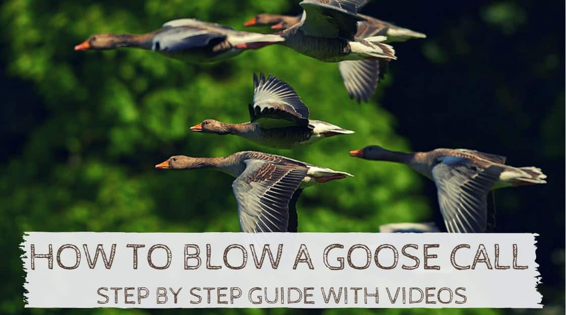 How to Blow a Goose Call
