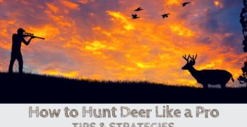How to Hunt Deer Like a Pro (TIPS & STRATEGIES)