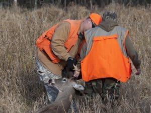 Deer Hunting Tips, Tracking Deer
