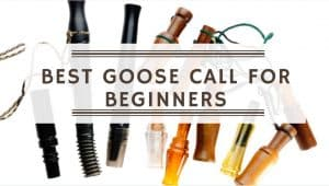 Best Goose Call For Beginners
