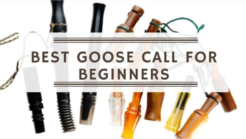 Best Goose Call For Beginners (March 2019)