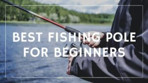 Best Fishing Pole for Beginners – Reviews, Buying Guide & FAQs