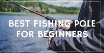 Best Fishing Pole for Beginners – Reviews & Buying Guide