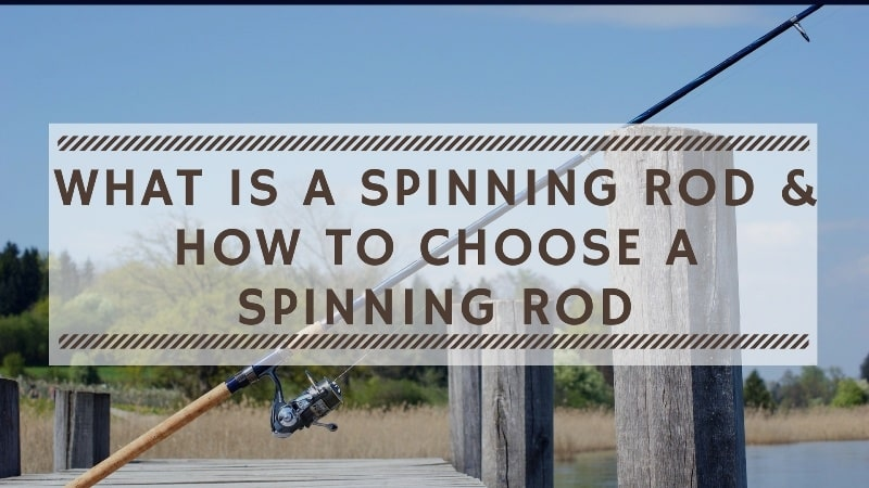 What is a Spinning Rod & How to Choose a Spinning Rod