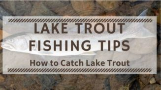 Lake Trout Fishing Tips. How to Catch Lake Trout. Lake Trout Fishing Techniques.