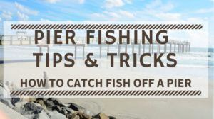 Pier Fishing Tips & Tricks – How to Catch Fish off a Pier