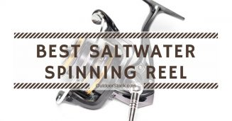 Best Saltwater Spinning Reels Under 200
