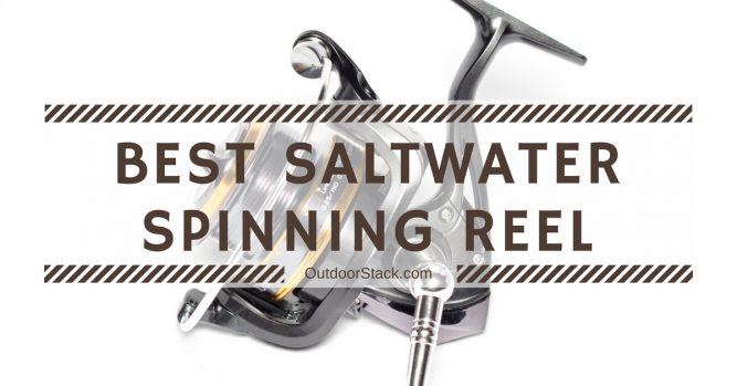 Best Saltwater Spinning Reel Under 200