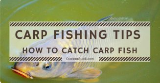 Carp Fishing Tips. Carp Fishing Tips for Beginners. How to Catch Carp Fish.