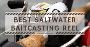 Best Saltwater Baitcasting Reels – 2020 Top Picks & Reviews