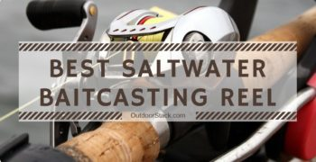 Best Saltwater Baitcasting Reels – Top Picks & Reviews
