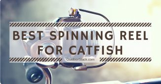 Best Spinning Reel for Catfish