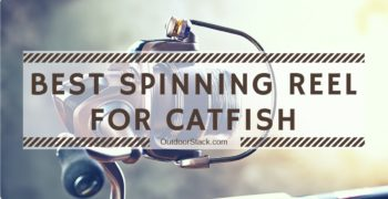 5 Best Catfish Spinning Reel Reviews