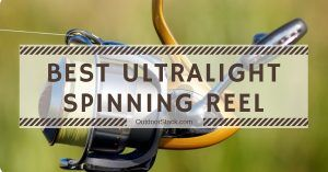 Best Ultralight Spinning Reel 2020