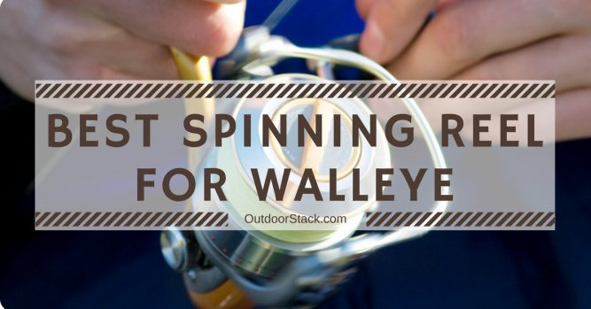 Best Spinning Reel for Walleye