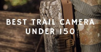 Best Trail Cameras Under $150 of 2020 – Top 5 Reviews