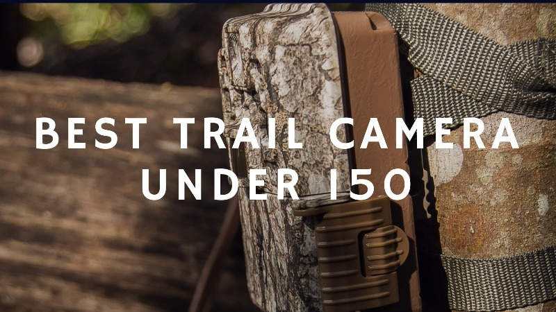 Best Trail Camera Under 150 (March 2019)