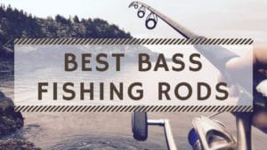 Best Bass Fishing Rods – Reviews & Buyer's Guide